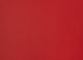 Horizon Capriccio Logo Red 10200 16