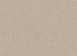 Solids Antique Beige 5422
