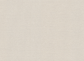 Solids Canvas 5453