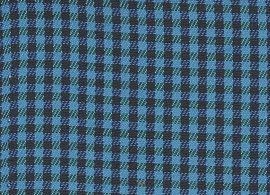 Checks Oliver Blue F062