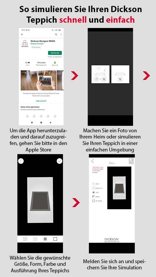 Alle Schritte zum Herunterladen und zur Anwendung der Dickson Rugs-App