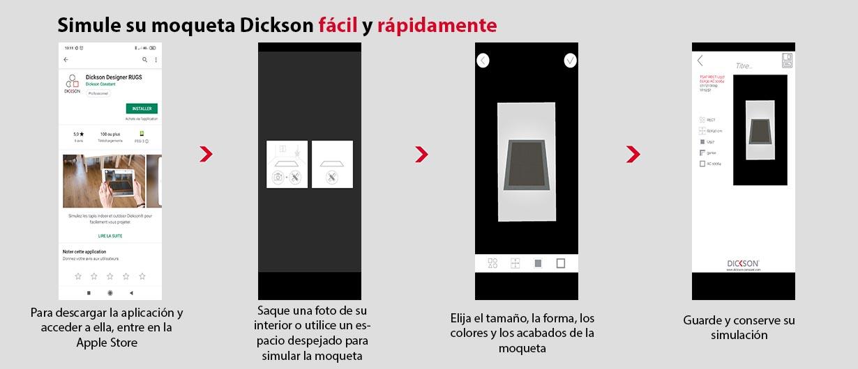 Todas las etapas para descargar y utilizar la aplicación Dickson Rugs